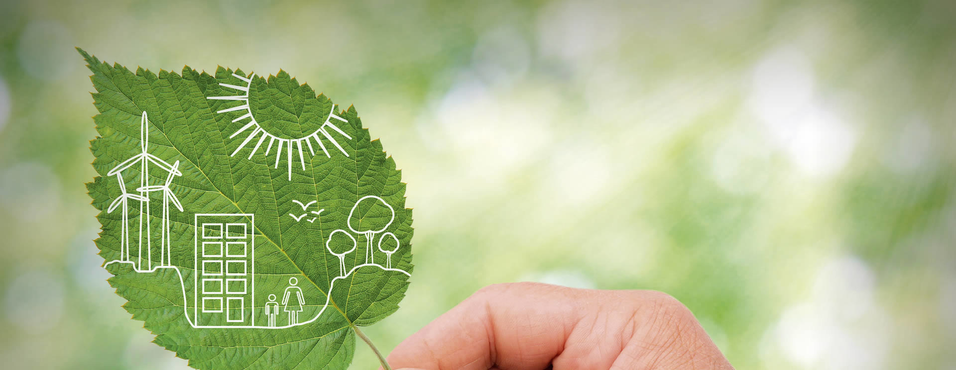 Nachhaltigkeit im Salzburger Hof