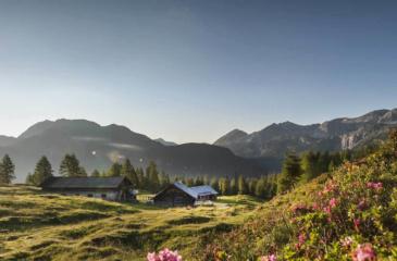 Wandern Salzburger Land in Zauchensee und Altenmarkt